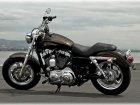 Harley-Davidson Harley Davidson XL 1200C Sportster Custom 110th Anniversary Edition